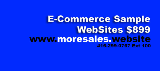 E-Commerce Sample WebSites $899