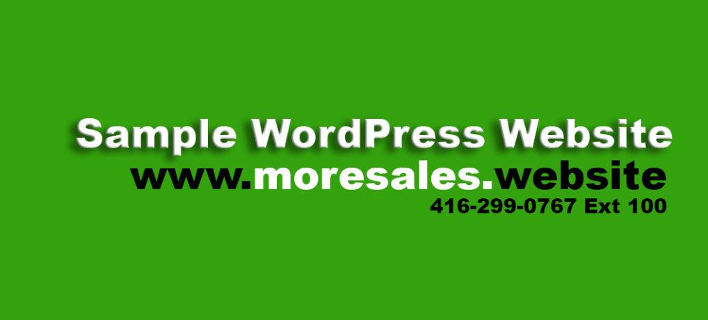 Sample WordPress Website